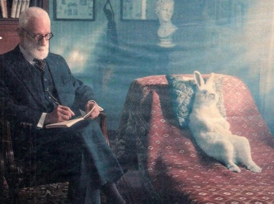 Freud-the-Rabbit